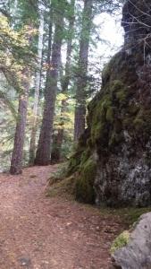 ump-trail3