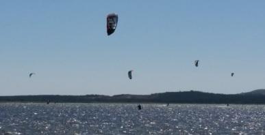 butch-kite2