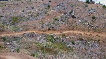 post canyon2