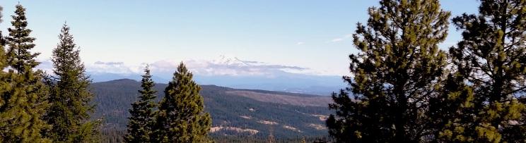 Mt Adams from the firetower